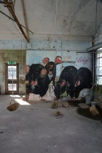 Rats by Julia Bedford in Zigzag building