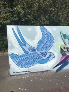 Swallow by Kim Krumble at the launch of the mural trail at Glastonbury skatepark. scaled