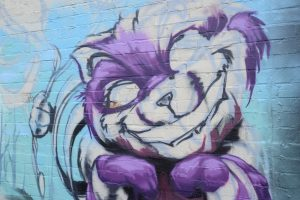 26 cheshire cat coming soon