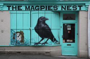 magpies nest on Benedict street